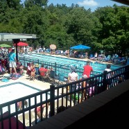 Another great reason we call Reston home…16 community pools!