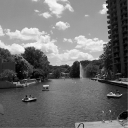 2012 Reston Summer Real Estate Report
