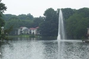 Reston Waterfront Homes